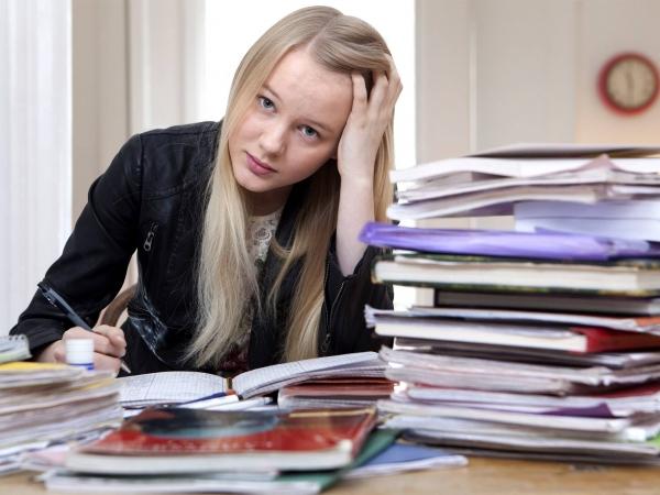Secondary school homework help